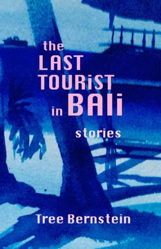 Last Tourist in Bali Cover Image