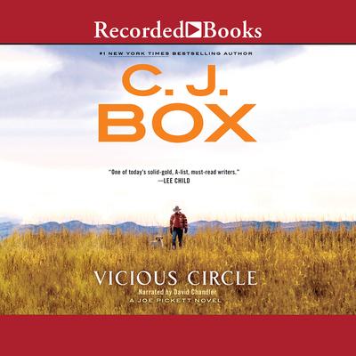 Vicious Circle (Joe Pickett #17) Cover Image