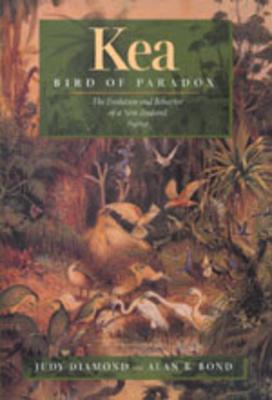 Cover for Kea, Bird of Paradox