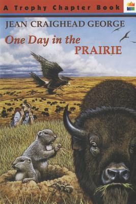 One Day in the Prairie Cover
