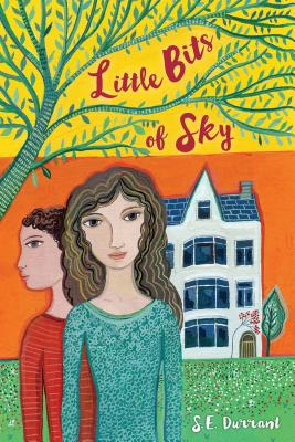 Little Bits of Sky Cover Image