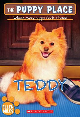 The Teddy (The Puppy Place #28) Cover Image