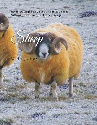 Sheep: Notebook Large Size 8.5 x 11 Ruled 150 Pages Softcover For Home School Office College Cover Image