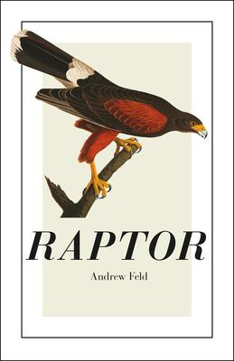 Raptor (Phoenix Poets) Cover Image