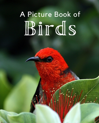 A Picture Book of Birds: A Beautiful Picture Book for Seniors With Alzheimer's or Dementia. A Perfect Gift For Bird Lovers! Cover Image