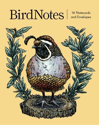 BirdNotes (16 notecards, 8 original designs): 16 Notecards and Envelopes Cover Image