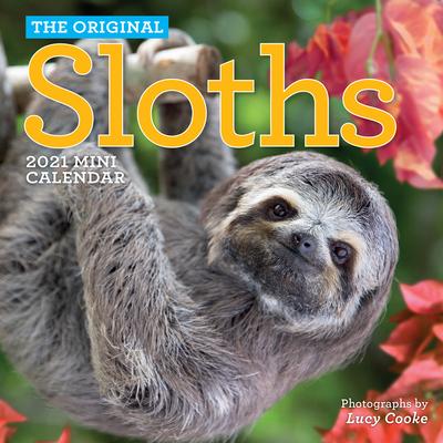 Original Sloths Mini Wall Calendar 2021 Cover Image