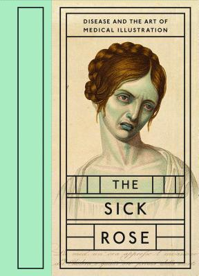 The Sick Rose: Disease and the Art of Medical Illustration Cover Image