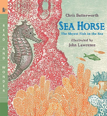 Sea Horse: The Shyest Fish in the Sea Cover Image