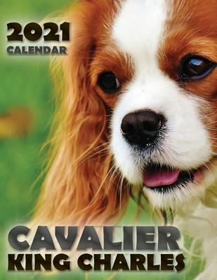 Cavalier King Charles 2021 Calendar Cover Image
