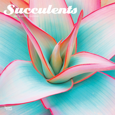 Succulents 2021 Square Cover Image