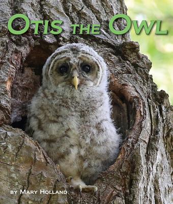 Cover for Otis the Owl