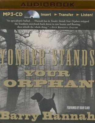 Cover for Yonder Stands Your Orphan