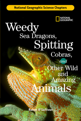 Weedy Sea Dragons, Spitting Cobras Cover