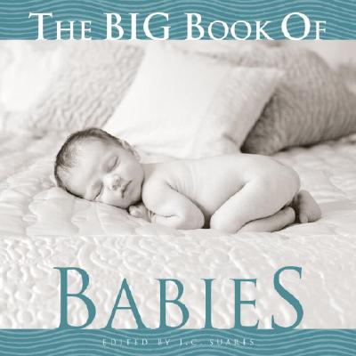 The Big Book of Babies Cover Image