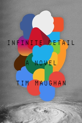 Infinite Detail: A Novel Cover Image