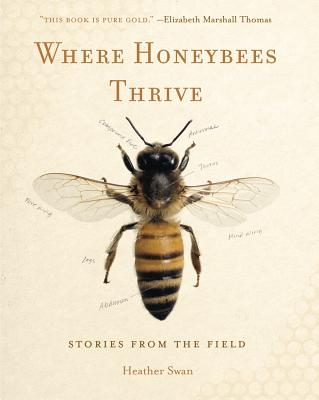 Where Honeybees Thrive: Of Animals and Cultures (Animalibus #10) Cover Image
