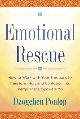 Emotional Rescue: How to Work with Your Emotions to Transform Hurt and Confusion Into Energy That Empowers You Cover Image