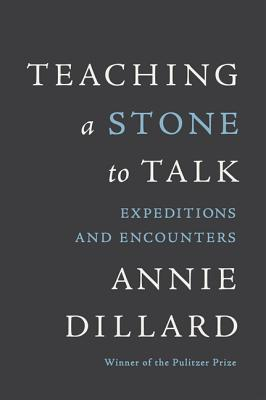 Teaching a Stone to Talk: Expeditions and Encounters Cover Image
