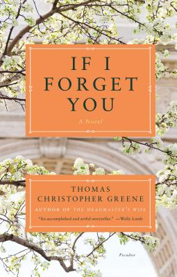 If I Forget You: A Novel Cover Image