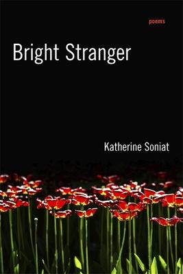 Cover for Bright Stranger