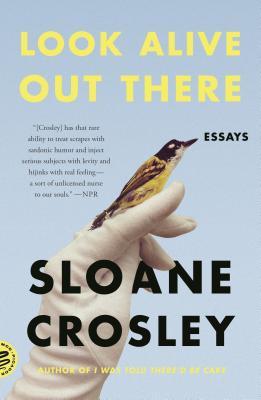 Look Alive Out There: Essays Cover Image