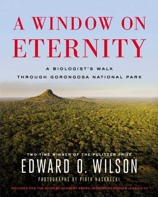 A Window on Eternity Cover
