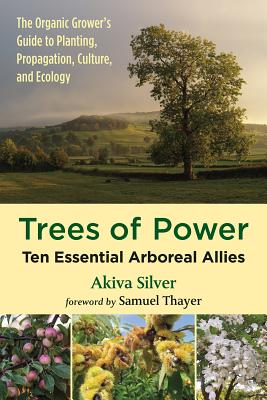 Trees of Power: Ten Essential Arboreal Allies Cover Image