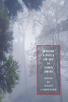 Where a Piece of Me is Torn Away Cover Image