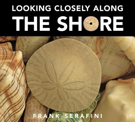 Looking Closely Along the Shore Cover