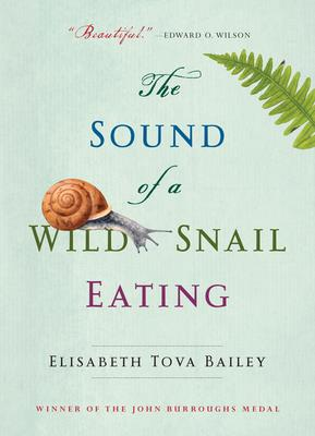 sound of wild snails eating