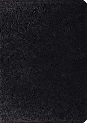 ESV Archaeology Study Bible (Black) Cover Image