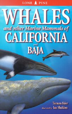 Whales of California and Baja: And Other Marine Mammals Cover Image