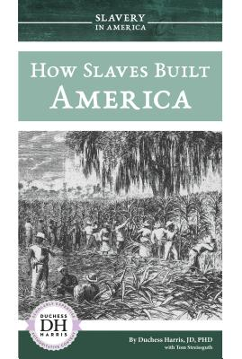 How Slaves Built America Cover Image