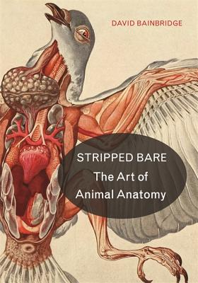 Stripped Bare: The Art of Animal Anatomy Cover Image