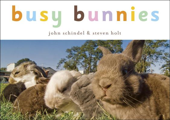 Busy Bunnies Cover