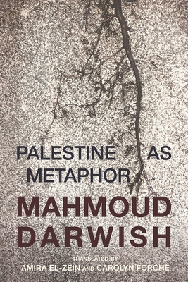 Palestine as Metaphor Cover Image