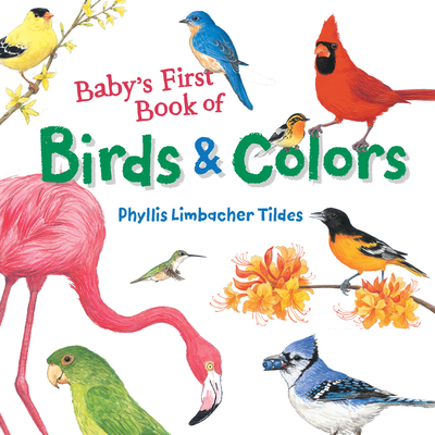 Baby's First Book of Birds & Colors Cover Image