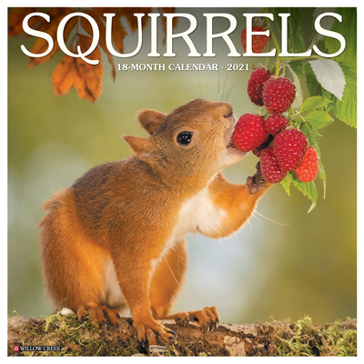 Squirrels 2021 Wall Calendar Cover Image