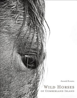 Wild Horses of Cumberland Island Cover Image