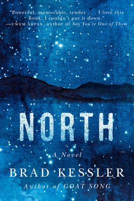 North: A Novel Cover Image
