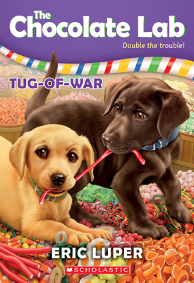 Cover for Tug-of-War (The Chocolate Lab #2)