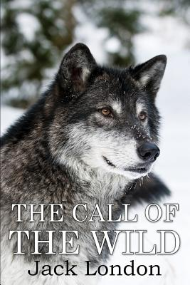 The Call of the Wild: (mockingbird Classics) Cover Image