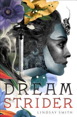Dreamstrider Cover