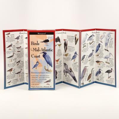 Birds of the Mid-Atlantic Coast Cover Image