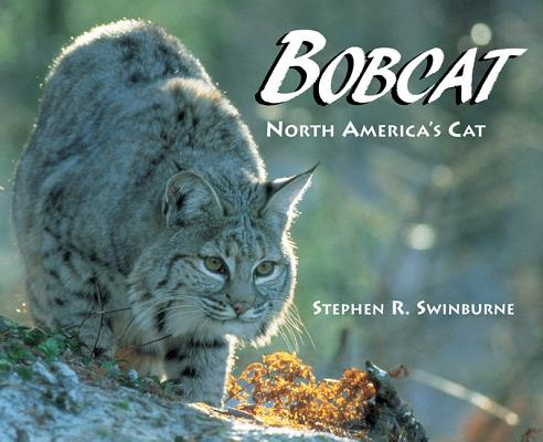 Cover for Bobcat