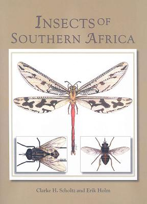Insects of Southern Africa Cover Image