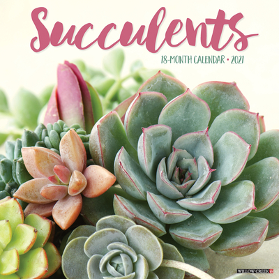 Succulents 2021 Wall Calendar Cover Image