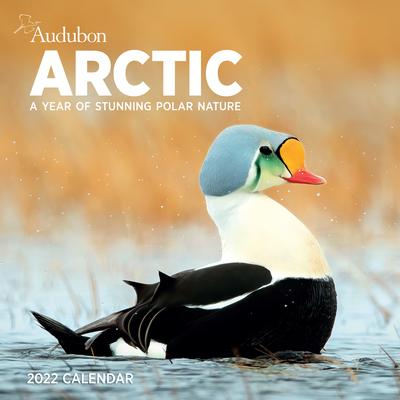 Cover for Audubon Arctic Wall Calendar 2022