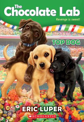 Cover for Top Dog (The Chocolate Lab #3)